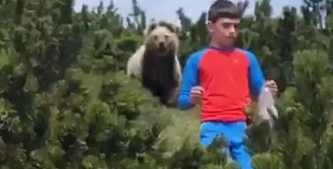 L'orso e il bambino