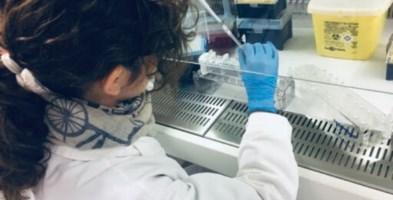 Coronavirus, allarme a Diamante: attivato il protocollo di emergenza