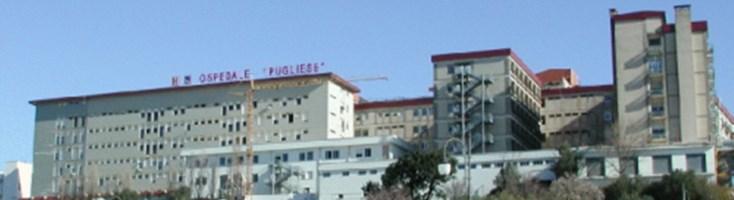Catanzaro, 206 tra assunzioni e stabilizzazioni all'ospedale Pugliese: il quadro completo