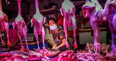 Il mercato di Wuhan, foto ansa