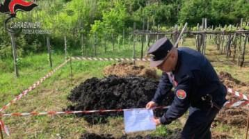 Rifiuti pericolosi abbandonati nelle campagne del Cosentino, denunce e sequestri