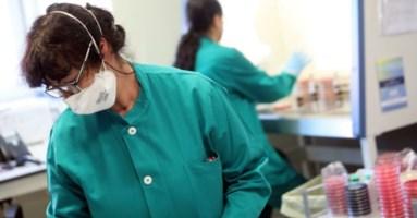 Coronavirus Lamezia, salgono i contagi: positiva una donna di 61 anni