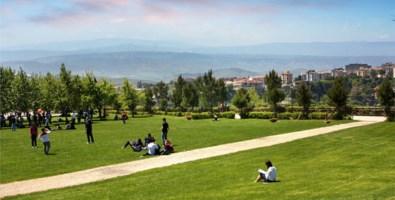 Catanzaro, il sindaco chiude aree verdi e parchi gioco fino al 3 aprile