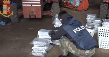 'Ndrangheta, cosca Molè Gioia Tauro: otto condanne in Corte d'appello