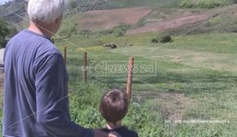 Coronavirus, il felice isolamento del contadino calabrese: «È un tempo di rinascita»