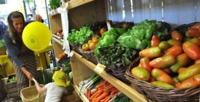 Aziende agricole in Calabria, ecco le proposte anti-crisi di Coldiretti
