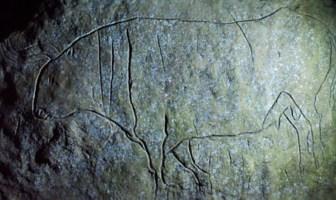 Le suggestive incisioni paleolitiche del Riparo del Romito