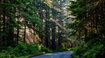 Regione, in arrivo un milione per la tutela di biodiversità e zone rurali
