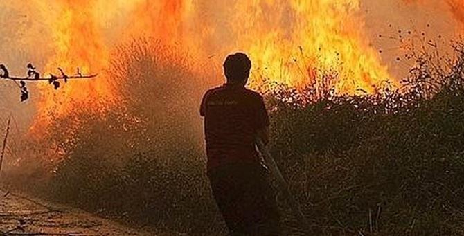 Incendio (foto dal portale della Regione Calabria)