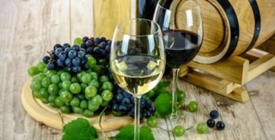 Lamezia: torna la rassegna dei vini, dell'olio e della birra made in Calabria