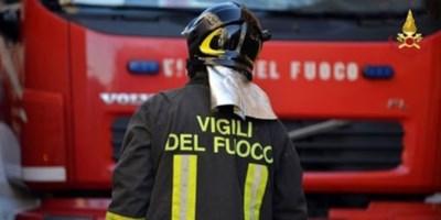 Incendio nel Cosentino, distrutta una vasta area di uliveti