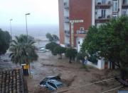 Stato di calamità per le zone agricole dello Jonio cosentino