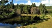 Il Rimuseum di Rende al centro delle iniziative promosse dal Parco Nazionale della Sila