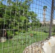 Reggio Calabria, a rischio la stazione sperimentale essenze