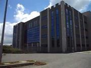 Topi nel nuovo tribunale di Vibo Valentia, la protesta del personale