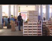 VIBO, BLITZ DEI NAS: SEQUESTRATE 150 TONNELLATE DI IMMONDIZIA