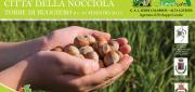 I consiglieri D'Acri, Bova e Sculco alla Assise nazionale 'Città della nocciola'