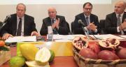 Psr, oltre un miliardo di fondi per la Calabria. Oliverio ha presentato il piano approvato dalla Commissione europea