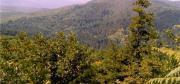 Al via i lavori per la Ciclovia dei Parchi: 142 chilometri da Fabrizia a Tiriolo
